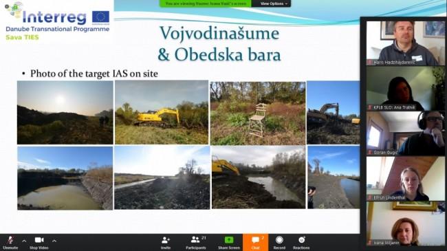 VSUME_Obedska bara_Pilot_Site (4)