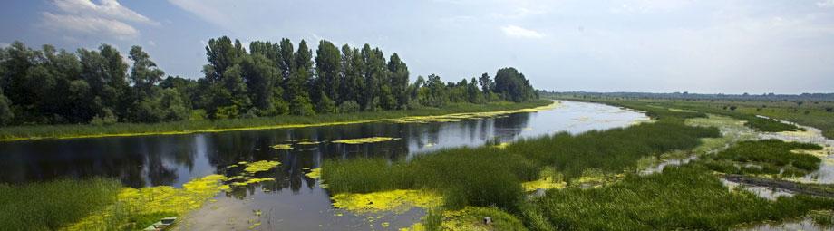 Zasavica - vizitorski centar