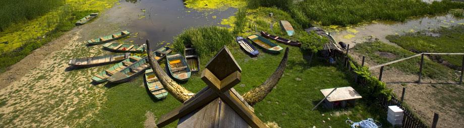Zasavica - čamci